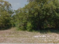 Citrus Co, Fl 1.18 Ac, 45K Neg : Crystal River : Citrus County : Florida