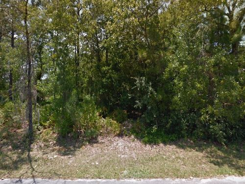 Citrus Cnty, Fl .27 Ac 34K, Nego : Homosassa : Citrus County : Florida