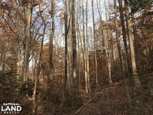 Simpsonville Land For Homesite : Simpsonville : Greenville County : South Carolina