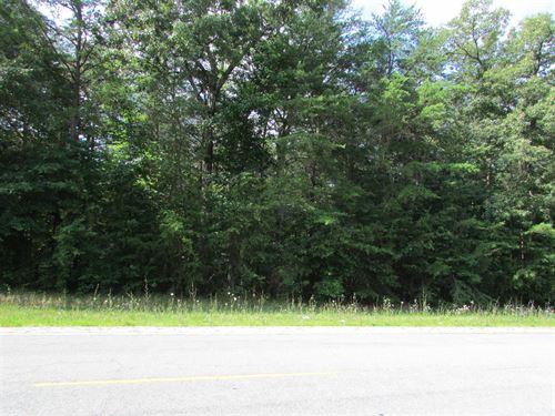 Nice Neighborhood In Monteagle, Tn : Monteagle : Grundy County : Tennessee