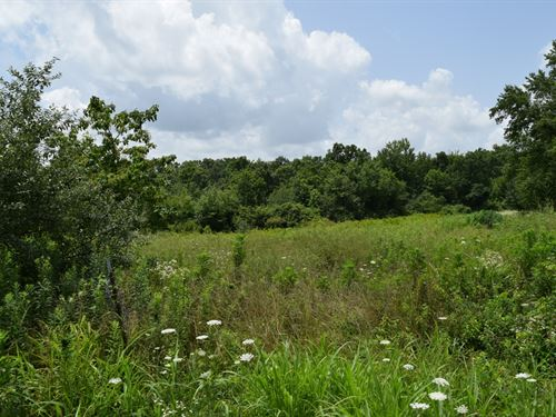 Beautiful Location With A Creek : Monteage : Grundy County : Tennessee