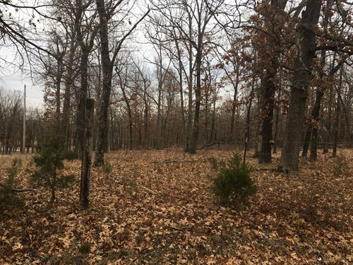 Land to Build Your Home Lebanon MO : Lebanon : Laclede County : Missouri