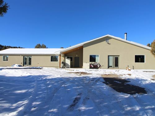 Home Land, Mancos Co, Very Private : Mancos : Montezuma County : Colorado