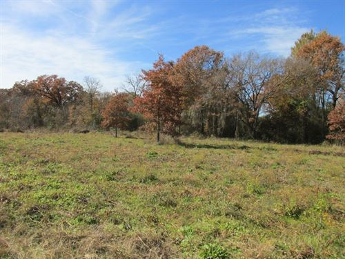 2 Lots Tennessee Colony Home Site : Tennessee Colony : Anderson County : Texas