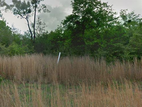 Escambia Co, Fl .4874 Ac, 70K Neg : Pensacola : Escambia County : Florida