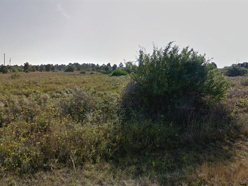 Lee County, Fl 1 Ac $28,499 Neg : Lehigh Acres : Lee County : Florida