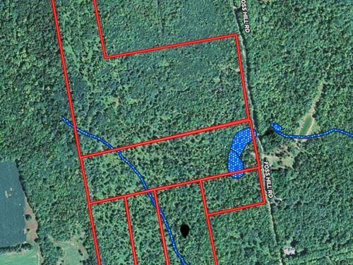 Land Lot For Sale in Garland, Maine : Gardiner : Penobscot County : Maine