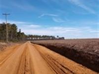 Clean Country Living, $1000 Down : Hawkinsville : Pulaski County : Georgia