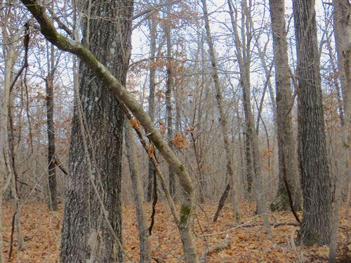 Land in Mammoth Spring Arkansas : Mammoth Spring : Fulton County : Arkansas