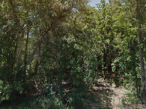 Citrus, Fl 1.25 Ac 40K Nego : Hernando : Citrus County : Florida