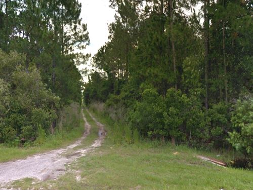 Over 1 Acre Zoned Agricultural : Palatka : Putnam County : Florida