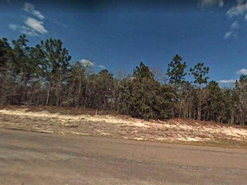 Marion County, Fl $18,000 : Ocala : Marion County : Florida