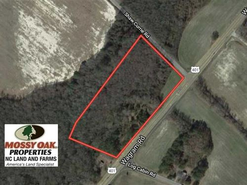Under Contract, 8 Acres of Timber : Laurinburg : Scotland County : North Carolina