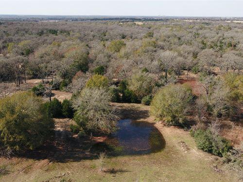 10.91 Acres, Fm 908 : Caldwell : Burleson County : Texas