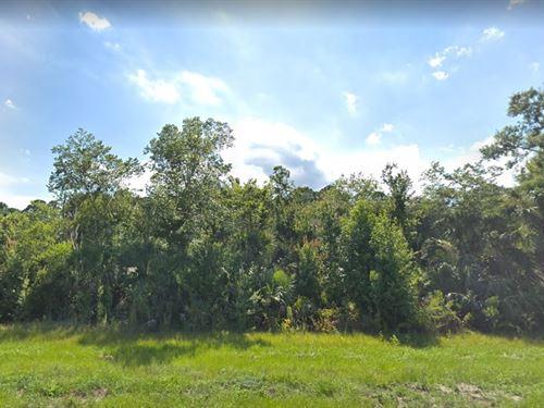 Volusia County, Fl $16,000 Neg : Oak Hill : Volusia County : Florida