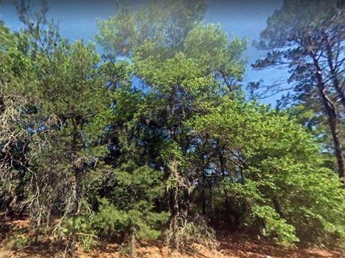 Clay County, Fl $155,000 : Keystone Heights : Clay County : Florida