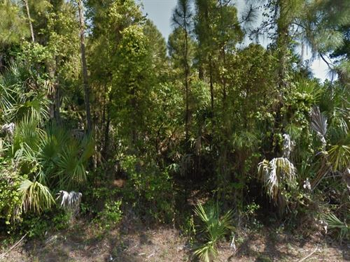 Sarasota Co, Fl .229 Ac, 38K Neg : North Port : Sarasota County : Florida