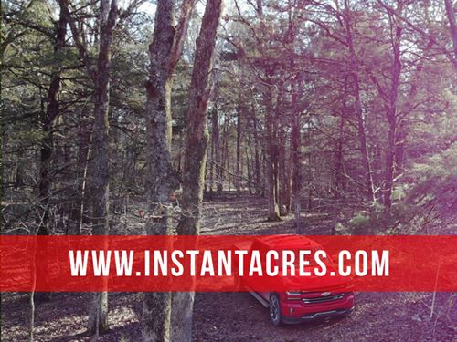 9 Acres, Frontage At Bull Shoals : Branson : Taney County : Missouri
