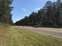 Wooded Home Site New Survey : Griffin : Spalding County : Georgia