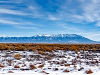 Ranch W Electricity & Road Frontage : Alamosa : Alamosa County : Colorado
