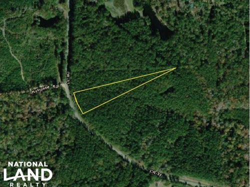 The Frankville CR 31 Homesite : Frankville : Washington County : Alabama
