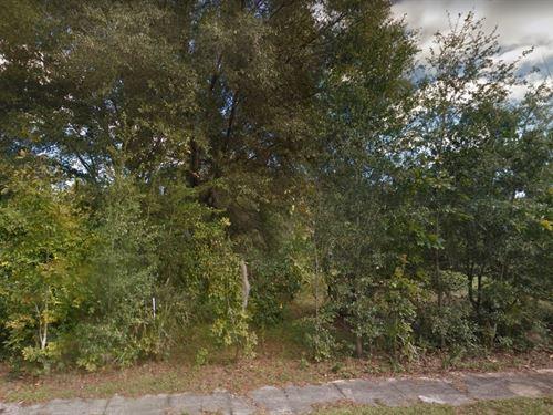 Volusia County, Fl $45,000 2 Lots : Deleon Springs : Volusia County : Florida