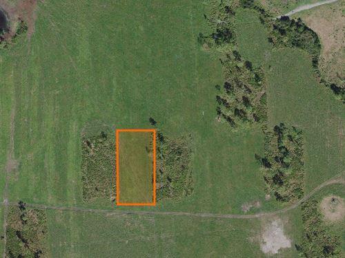 Polk County, Fl $35,000 Negotiable : Lake Wales : Polk County : Florida