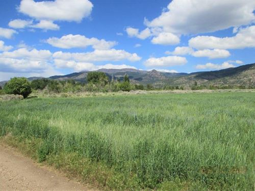 Awesome 1.33 Acres, New Pine Creek : New Pine Creek : Modoc County : California