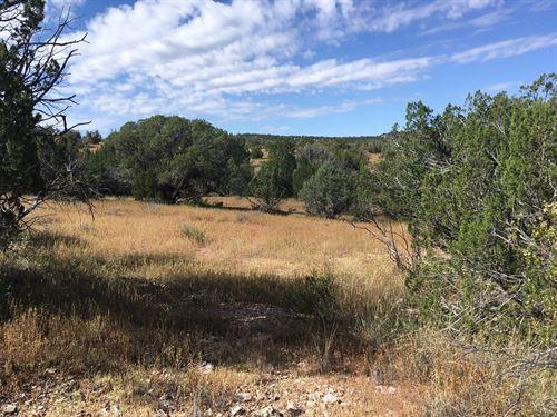 Mountain Land Northern Arizona : Seligman : Yavapai County : Arizona