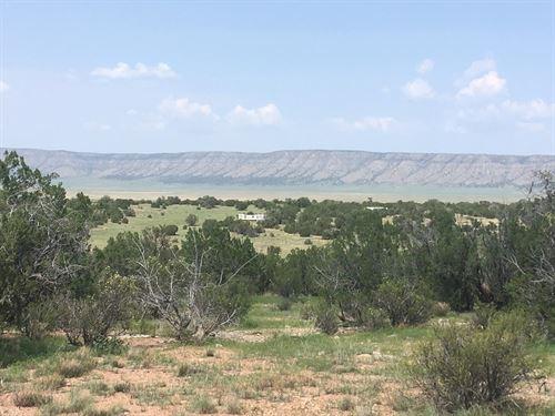 Low Cost Land Year Round Access : Seligman : Yavapai County : Arizona