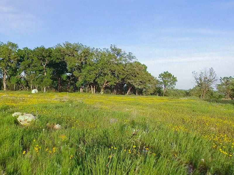 Picture Perfect Hill Country Living : New Braunfels : Comal County : Texas