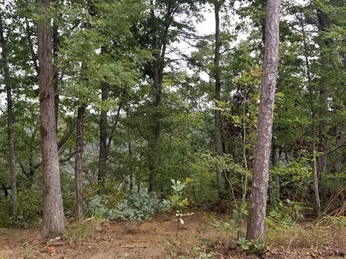 13.35+/- Acres Mtn Views : South Pittsburg : Marion County : Tennessee