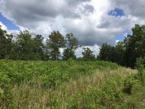 4.66+/- Acres Near Fall Creek Falls : Dunlap : Sequatchie County : Tennessee