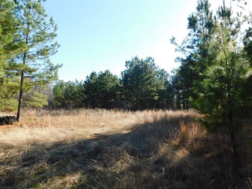 9.5 Acres Near Lake Palestine : Chandler : Henderson County : Texas