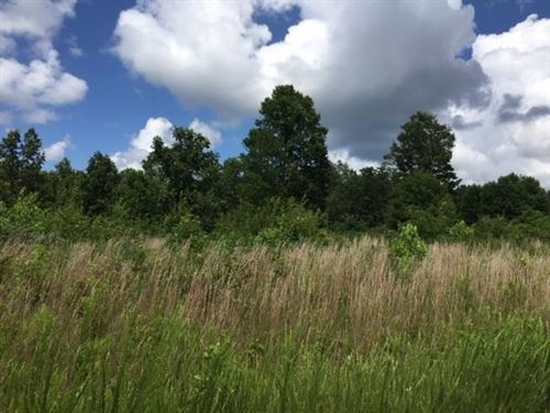 1.4+/- Acres With Beautiful Views : Dunlap : Sequatchie County : Tennessee