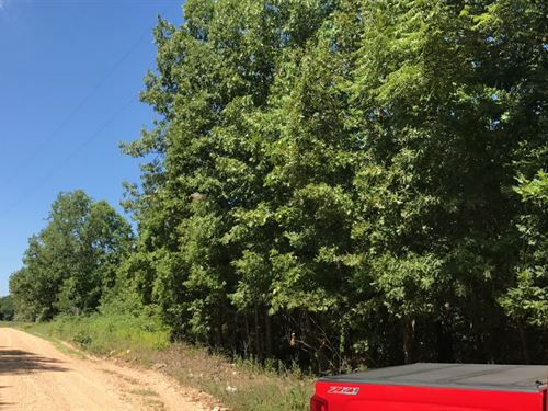 10 Acres With Power In Hartville : Hartville : Wright County : Missouri