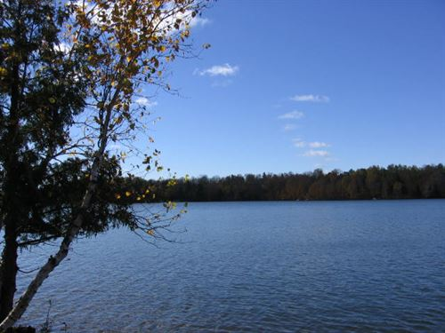 Perfect Lot On 3 Lake Chain : Winchester : Vilas County : Wisconsin