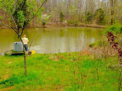 15 Acres For Sale : Alton : Oregon County : Missouri