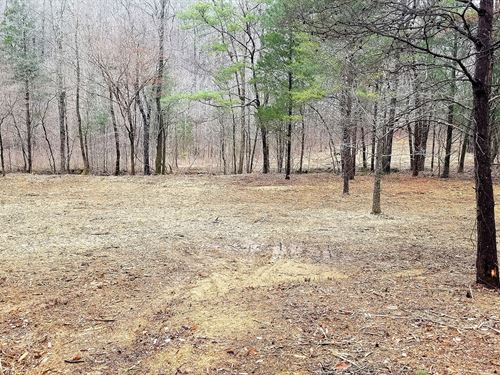 2.5 Acres Vacant Unrestricted Land : Linden : Perry County : Tennessee