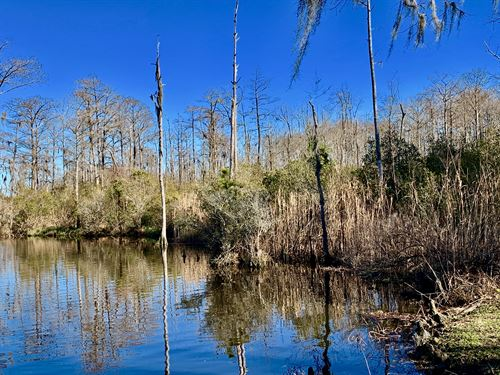 Waterfront Lot For Sale, Nc : Chocowinity : Beaufort County : North Carolina