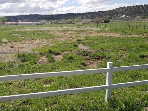 Land Mancos CO Durango CO : Mancos : Montezuma County : Colorado