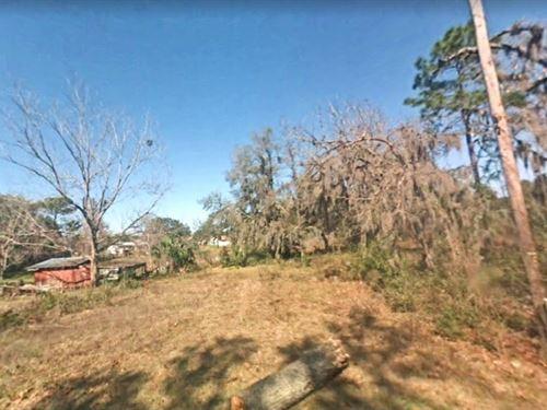 Citrus County, Fl $18,000 : Crystal River : Citrus County : Florida