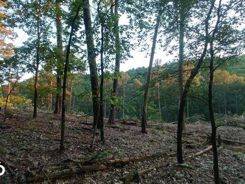 Residential Land Garrison Rd Area : Little Rock : Pulaski County : Arkansas