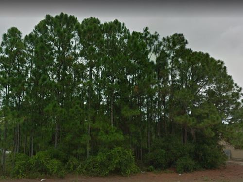 Indian River County, Fl $35,000 : Sebastian : Indian River County : Florida