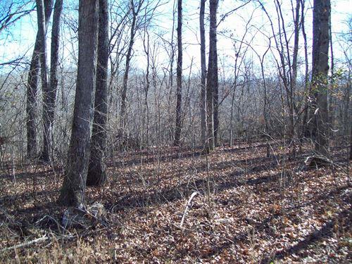3 Lots by Black River : Piedmont : Wayne County : Missouri
