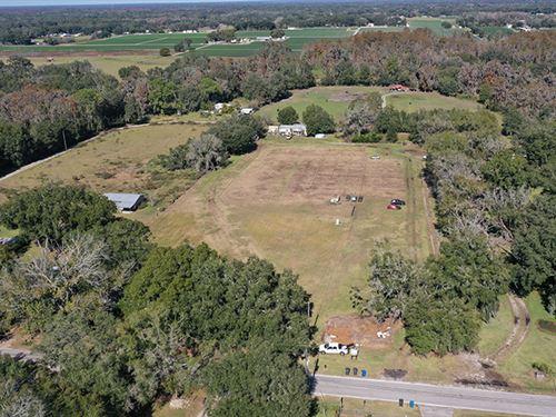 Plant City Acreage 6 : Plant City : Hillsborough County : Florida