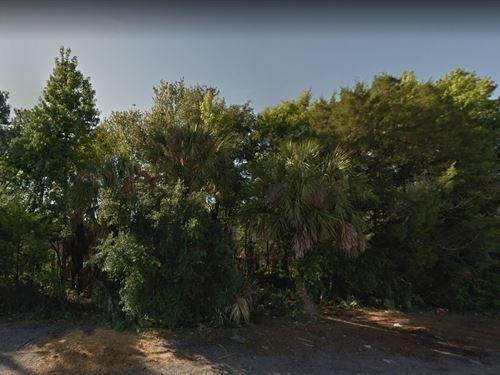 Brevard County, Fl $8,000 : Mims : Brevard County : Florida