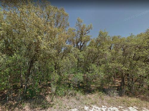 Highlands County, Fl $12,000 Each : Avon Park : Highlands County : Florida