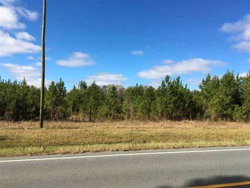 15.19 Acres Land For Sale Camden : Waverly : Camden County : Georgia