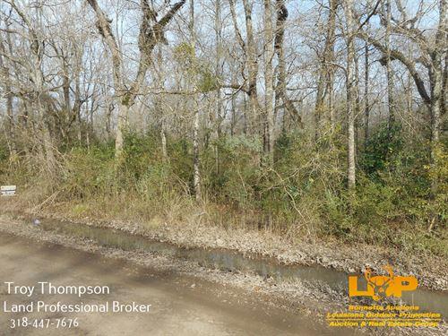 Boggy Bayou Lots : Marksville : Avoyelles Parish : Louisiana